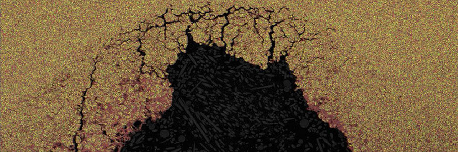 Scanning Elecctron Microscopy Image 1